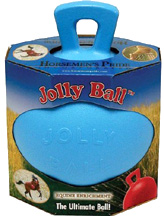 SCENTED Jolly Ball w/Handle Blueberry